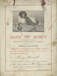 Certificate of Membership, Band of Mercy Youth Animal Protection Society
